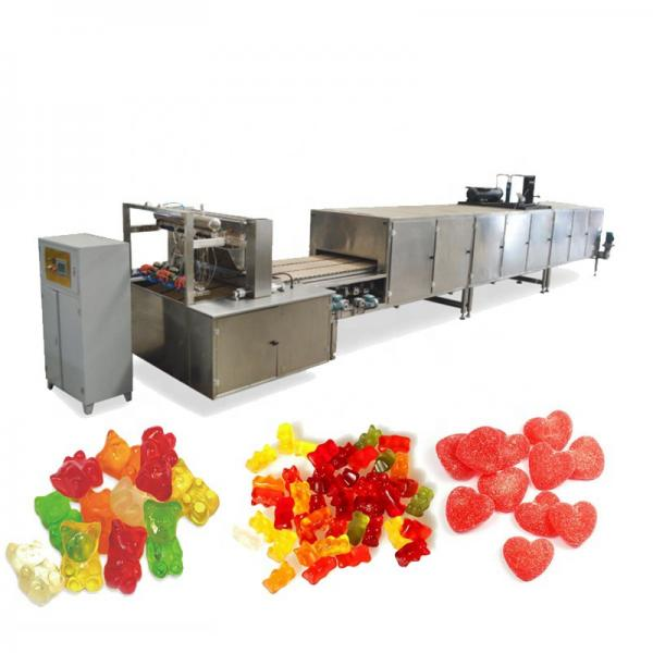 Horizontal Plastic Premade Standup Zipper Bag Doypack Automatic Pouch Packing Machine for Bear Gummy Candy
